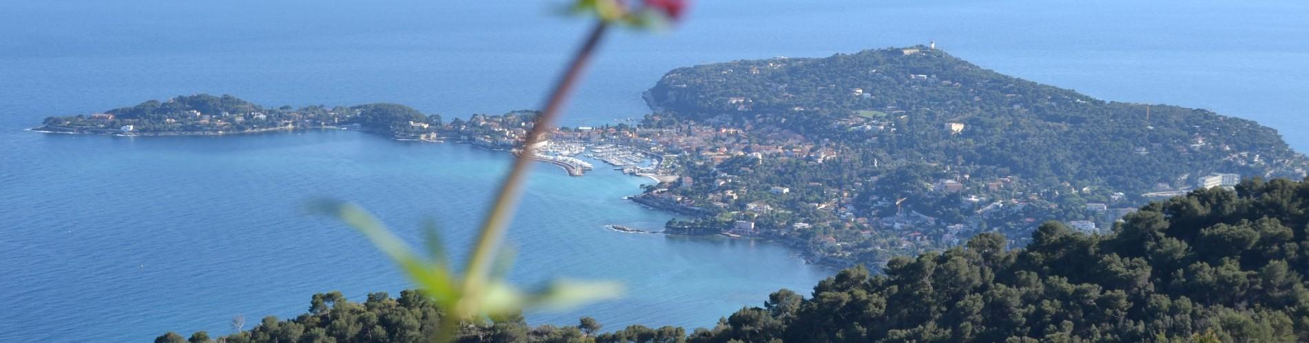 Cap Ferrat - Saint Jean Cap Ferrat