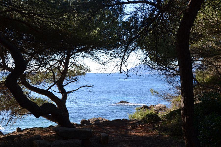 Ile de Sainte Marguerite Cannes - Hiking route