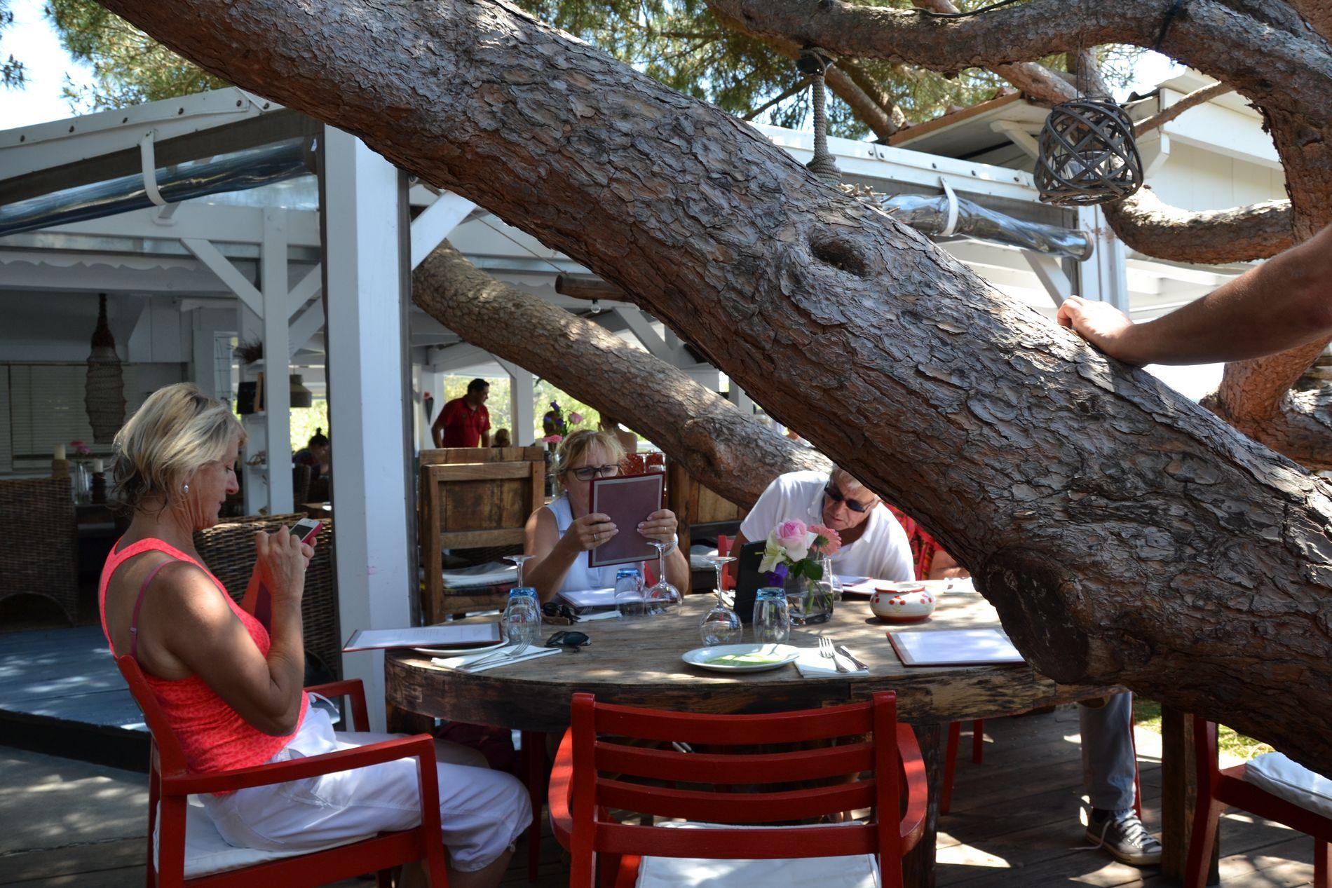 Restaurant Couleurs de Jardin La Croix Valmer