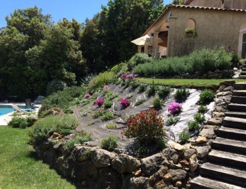 2015 Renovations Villa Valbonne Garden planting