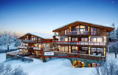 Wintersport Appartement Kaprun Oostenrijk