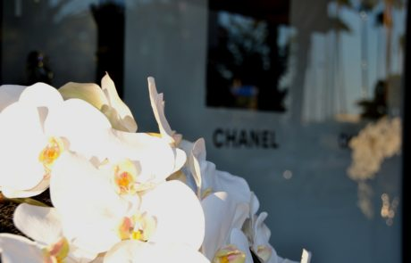 Chanel Cannes Croisette