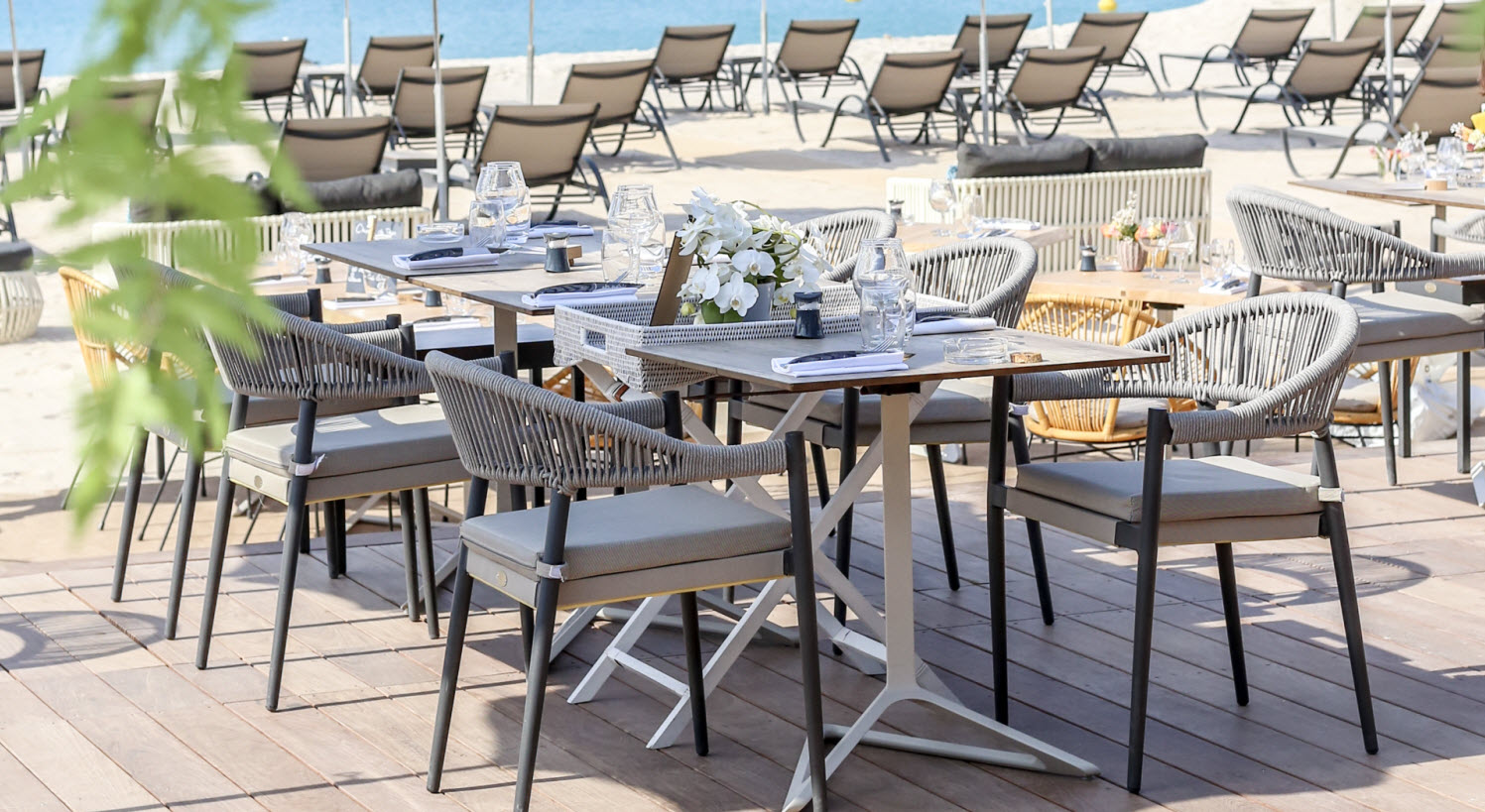 Restaurant Vegaluna Cannes Croisette