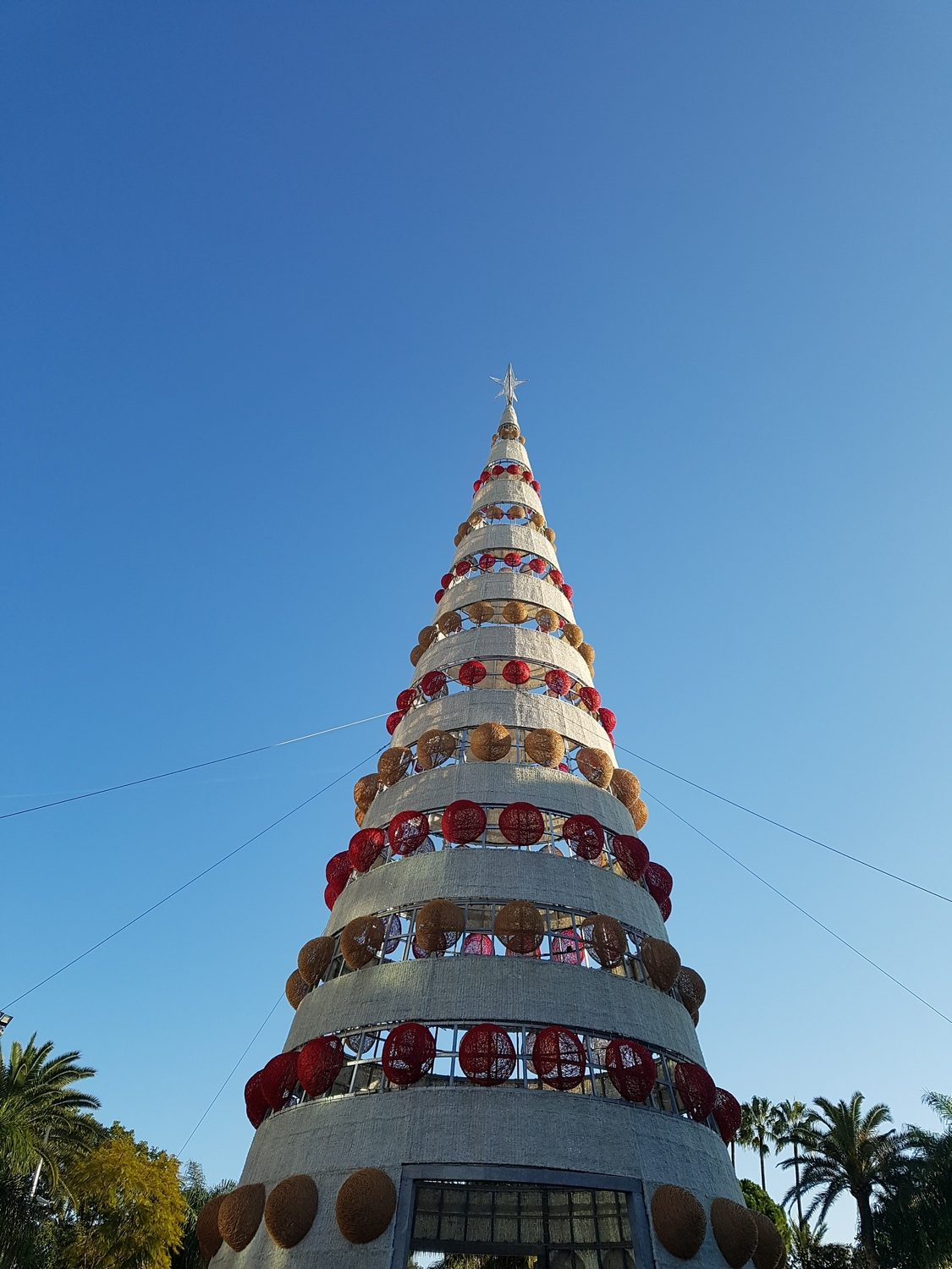 Christmas In Cannes
